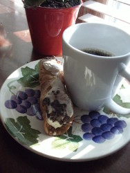 my homemade cannoli