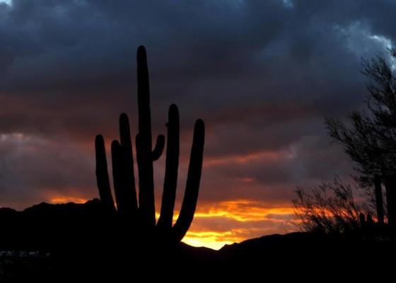 Winter Solstice Sunset, AZ