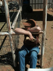 Laura, sitting in the goat pens