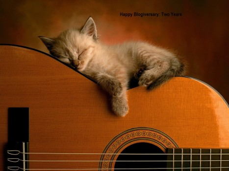 kitty on guitar