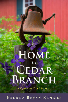 Home-to-Cedar-Branch-Novel-by-Brenda-Remmes