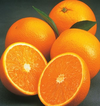 Valencia oranges are the absolute best when in season!