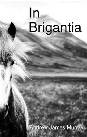 In Brigantia by Andrew James Murray