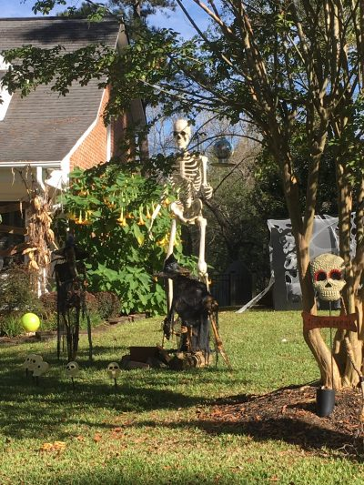 neighbor's huge skeleton